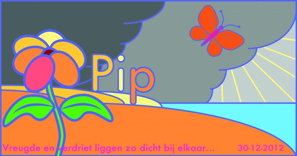 kaart voor Pip